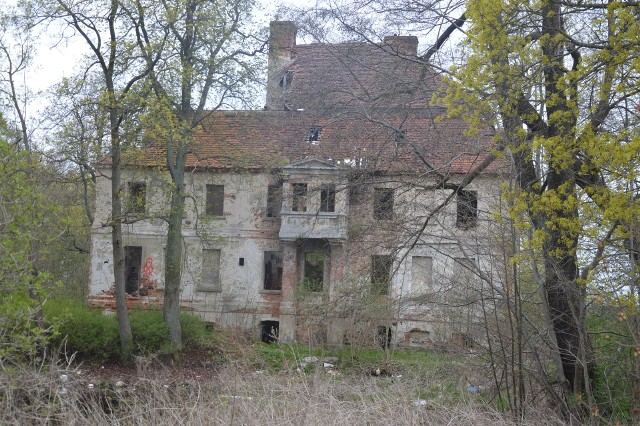 Zarówno zabytkowy pałac w Studzieńcu oraz okoliczny teren, wymagają gruntownej rewitalizacji