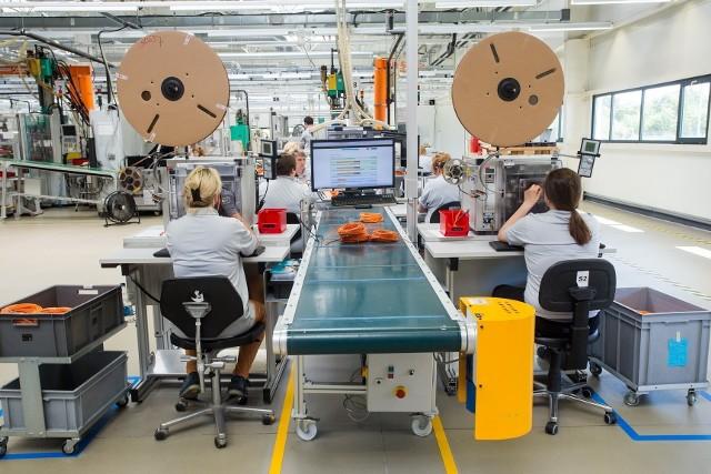 Firma ifm ecolink działa w Opolu od 2012 roku. Zajmuje się produkcją okablowanie ze złączami przemysłowymi.