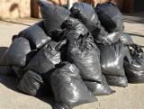 Jakie opłaty za odbiór śmieci w powiecie szydłowieckim? Są kolosalne różnice w stawkach między gminami