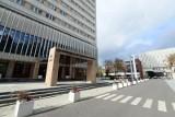 Uniwersytet Marii Curie-Skłodowskiej zaprasza na Tydzień Mózgu, czyli #MariaMyśli. Co przygotowała uczelnia?