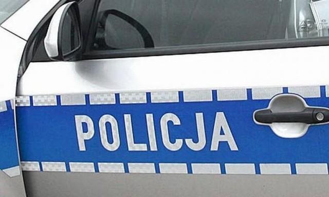 Wstępne ustalenia policjantów wskazują, że przyczyną wypadku było niedostosowanie prędkości do warunków panujących na drodze.