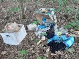 Zielony Las w Żarach. Zobacz, jakie śmieci zostawiają tu mieszkańcy!