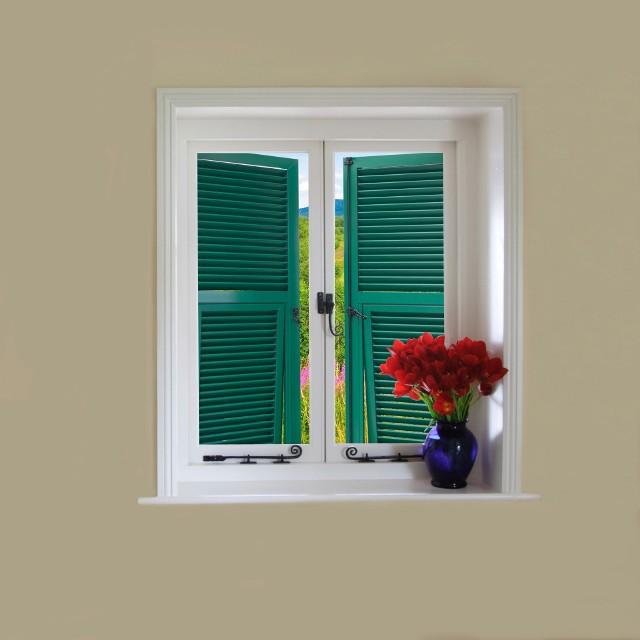 Aluminiowe okiennice w kolorze zielonymOkiennice wykonane z aluminium są znacznie wygodniejsze w utrzymaniu oraz bardziej wytrzymałe na działanie niesprzyjających czynników atmosferycznych, niż produkty wykonane z drewna lub PVC.