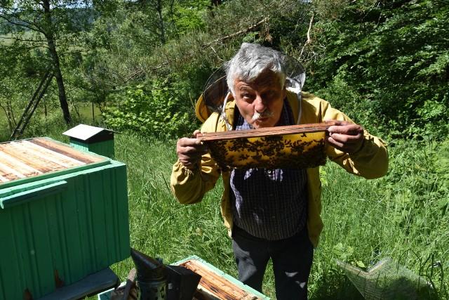 Kazimierz Madzula, właściciel Pasieki pod Brzozą w Gładyszowie, pszczoły hoduje od sześciu dekad. Wie o nich dosłownie wszystko