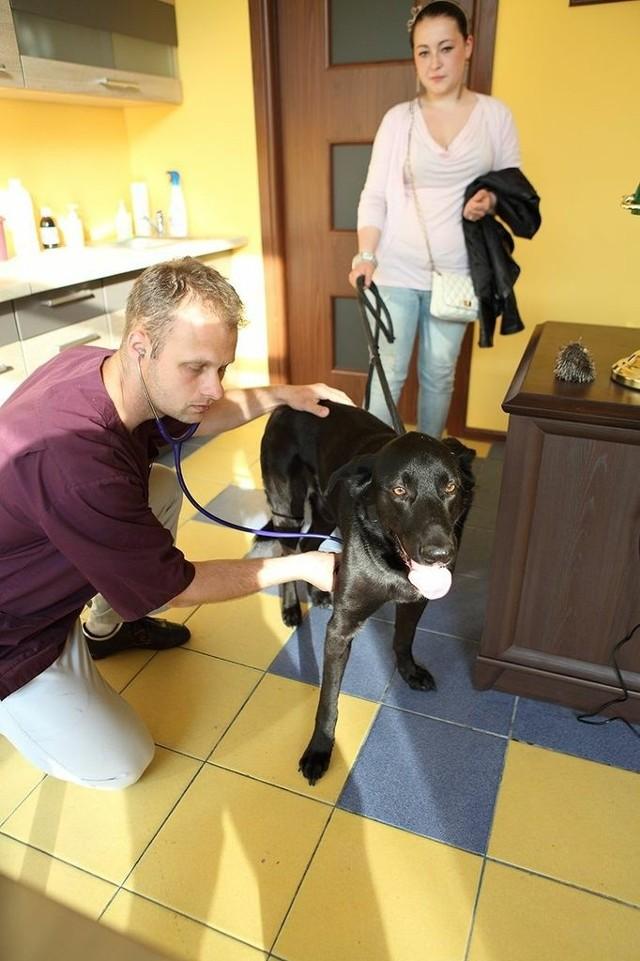 W Ustce powstała lecznica dla zwierząt z hotelem.