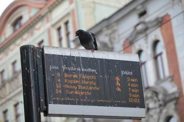 """Tablica informacyjna przy przystanku """"Teatr Bagatela"""""""