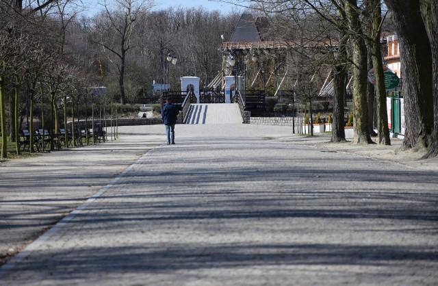 Koronawirus opustoszył alejki w inowrocławskim Parku Zdrojowym. Teraz jest tam raj dla zwierzaków