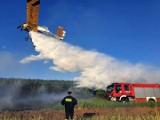 Wspólnymi siłami lotnicy i strażacy błyskawicznie ugasili pożar lasu w okolicach Murzynowa