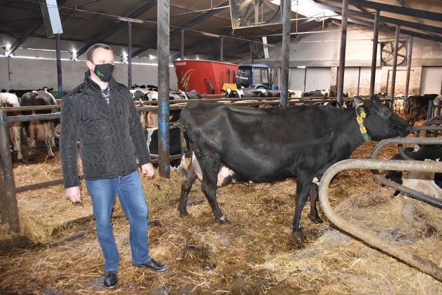 - Opłacało się nam przejście do innego zakładu - dodaje pan Wojciech, który zdaje sobie sprawę, że sprzedając mleko w pojedynkę, nie byliby tak atrakcyjnym partnerem dla mleczarskiego giganta. Bo w grupie jest siła!