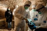 Badania DNA historię Piastów mogą wywrócić do góry nogami