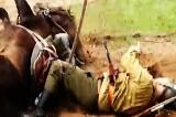 III Podlaski Piknik Militarny. Ułan spadł z konia (wideo)