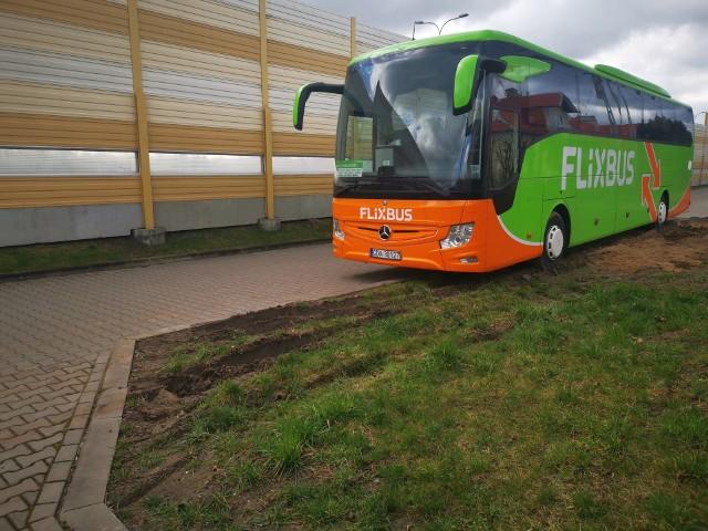 Kierowca FlixBusa zaparkował tak źle, że zniszczył trawnik