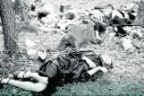 Na Wołyniu zatriumfowała zbrodnicza kalkulacja: Zabici już nie wrócą