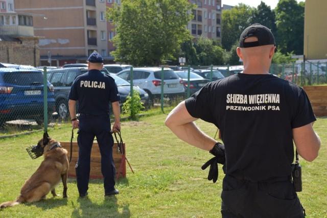 Szkolenie przewodników i psów służbowych na terenie Aresztu Śledczego w Białymstoku