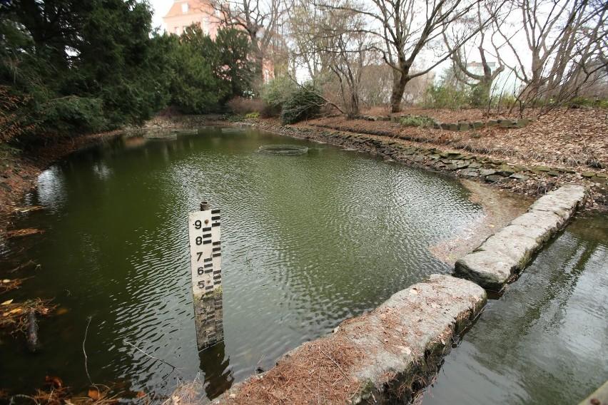 Wrocław: Ogród botaniczny umiera. Trwa szukanie winnych: ogród wskazuje pobliskiego dewelopera, deweloper obwinia klimat