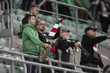 Kibice na meczu Śląsk Wrocław - Bruk-Bet Termalica Nieciecza. Byłeś na meczu Śląsk - Termalica? Znajdź siebie na trybunach (Zdjęcia kibiców)