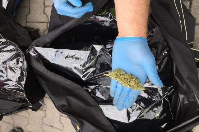 Miał 6 tysięcy porcji narkotyków w piwnicy - policjanci wyczuli zapach i wpadł