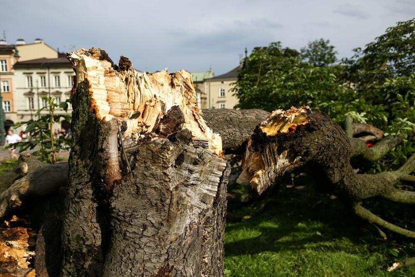 Kraków. Fatalny krajobraz miasta po burzy! Zalane ulice, połamane drzewa... [ZDJĘCIA]