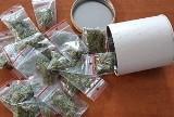 Międzyrzec Podlaski: 26-latek mógł przygotować ponad 60 porcji dealerskich marihuany. Odpowie za posiadanie narkotyków