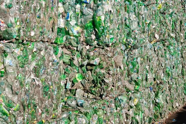 Aż 99 proc. mieszkańców prowadzi selektywną zbiórkę odpadów.