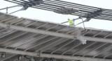 Odśnieżanie dachu Stadionu Śląskiego trwa. Ile wynosi dopuszczalne obciążenie? [WIDEO i ZDJĘCIA]