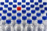 Kaucja za butelki plastikowe. Czy przejmiemy system kaucyjny od naszych zachodnich sąsiadów? Premier Morawiecki zapowiedział duże zmiany