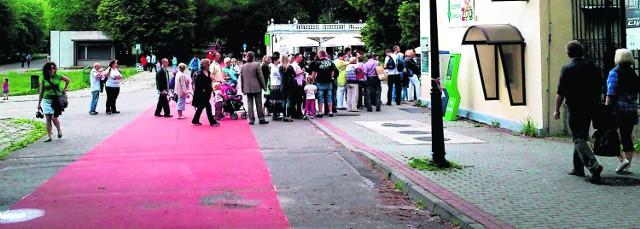 Ścieżka rowerowa na alei generała Ziętka. Kolejka do ogrodu zoologicznego: przejechać nie można