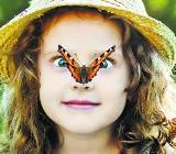 Szok! Na jednego człowieka przypada 250 mln owadów