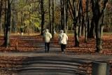 Kraków. Nowy program aktywności i integracji dla osób starszych
