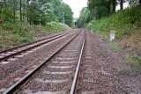 Złoty pociąg: Poszukiwacze skarbów z całego świata zjeżdżają do Wałbrzycha