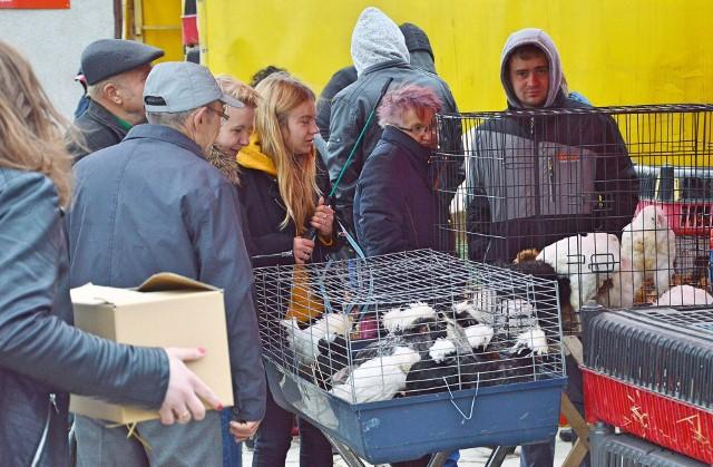Plac targowy przy ulicy Brodzińskiego w Proszowicach został otwarty, ale o takim zagęszczeniu klientów jak przed epidemią nie może być mowy