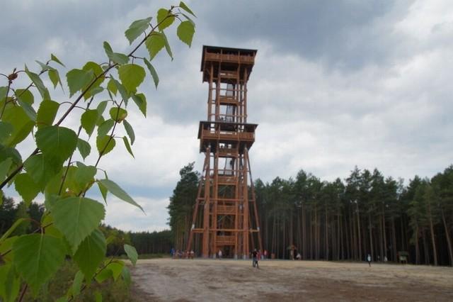 Wieża widokowa Joanna i widoki na Jezioro Sławskie i lasy.