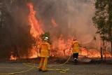 """""""Bezprecedensowe"""" pożary buszu w Australii. Są zabici i ranni. Spłonęło ponad 150 domów"""
