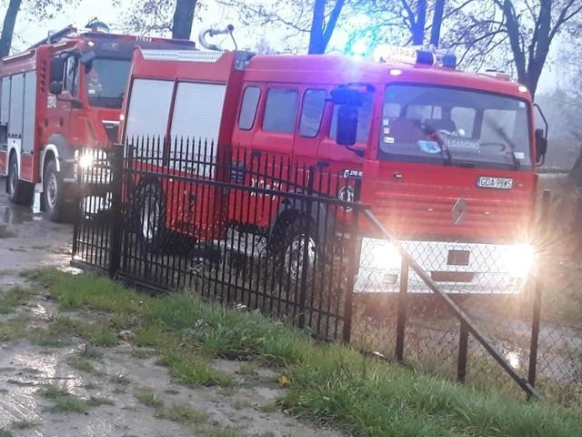 Do przydomowego, niezabezpieczonego szamba w Ełganowie wpadł szczeniak. Strażacy podjęli próbę ratowania pieska