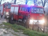 Gmina Trąbki Wielkie: Młody piesek wpadł do szamba w miejscowości Ełganowo. Zwierzaka nie udało się uratować [zdjęcia]