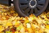 Jesień dla kierowców to bardzo trudny czas. Jak przygotować samochód na jesienne drogi? Oto garść porad