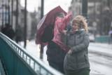 Silny wiatr na Dolnym Śląsku! Jak długo będzie tak wiało? [OSTRZEŻENIE METEO]