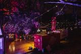 Narracje 2019. 11 edycja festiwalu sztuki współczesnej odbywa się na gdańskich Siedlcach. [Zdjęcia]