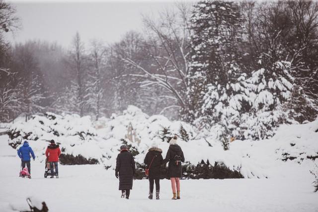 Zima w Parku Śląskim. Dawno nie było tutaj tak biało!Zobacz kolejne zdjęcia/plansze. Przesuwaj zdjęcia w prawo - naciśnij strzałkę lub przycisk NASTĘPNE