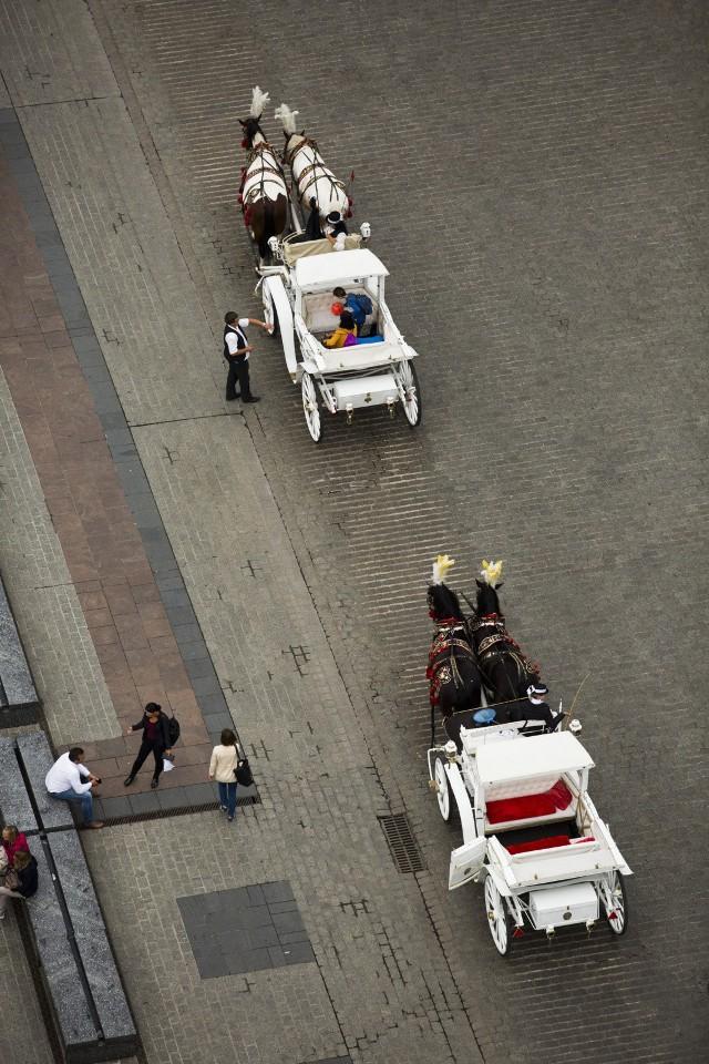 Postój dla koni dorożkarskich zlokalizowany będzie wzdłuż płyty Rynku Głównego i obejmie narożnik pomiędzy ulicami: Świętego Jana, Sławkowską, Szczepańską oraz Szewską