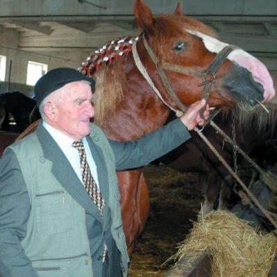 """Wacław Kobyliński ma serce do koni. - Żal sprzedawać, ale trzeba też podzielić się takim szczęściem z innymi końskimi """"wariatami"""" - mówi pan Wacław."""