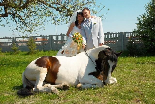 W sobotę, 2 maja, przysięgę małżeńską w kościele p.w. św. Antoniego Padewskiego w Ostrołęce złożyli sobie Diana Mierzejewska z Ostrołęki i Adam Płoski z Zawad