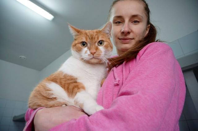 Euro z wolontariuszką Weroniką. Kocur ma około ośmiu lat, jest przyjacielski, bardzo lgnie do ludzi i lubi pieszczoty. Jest rekordzistą pod względem wagi. Waży ok. 7 kg. Nie przepada za obecnością innych kotów i chciałby być jedynym pupilem dla swojego człowieka.