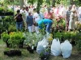Targi rolnicze w Kalsku (program imprezy)