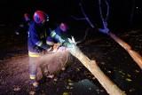 Orkan Grzegorz nad Podkarpaciem. Strażacy wyjeżdżali ponad 240 razy [WIDEO]