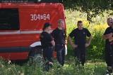 Trwa akcja oczyszczania stawu w parku w Dolinie Sokołówki
