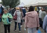 Niedzielny targ w Wierzbicy. Bardzo dużo handlujących i kupujących (ZOBACZ ZDJĘCIA)