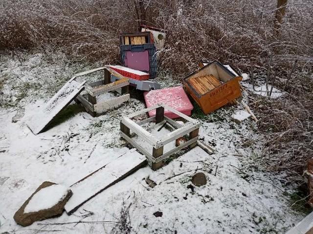 Kilkanaście uli zostało kompletnie zdewastowanych, a tysiące pszczół zmarło na mrozie