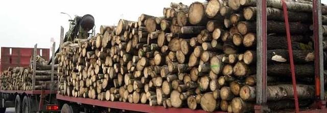 Tory zablokowała ciężarówka przewożąca drewno