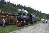 Parowóz, który kiedyś pełnił służbę w cukrowni w Kruszwicy, prowadzi pociągi turystyczne na trasie Bieszczadzkiej Kolejki Leśnej